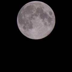 十五夜での満月