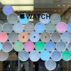 AppleWatch 42mm ステンレススチール ミラネーゼループ 3日間使用レポート